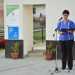 BMI-Kleinbus für Sier / BMI-kisbuszt kapott Szűr