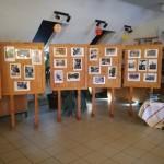 A Blickpunkt-képeket a Bozzay Pál Német Nemzetiségi Általános iskola könyvtárában állították ki / Die Blickpunkt-Fotos wurden in der Bibliothek der Nationalitätengrundschule Pál Bozzay ausgestellt