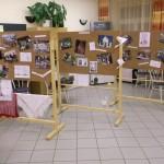 20 Jahre Nationalitätenselbstverwaltung - Ausstellung / 20 éves a nemzetiségi önkormányzat - kiállítás