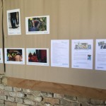 A Blickpunkt kiállítás Szajkon / Die Blickpunkt-Wanderausstellung in Seik (2018)
