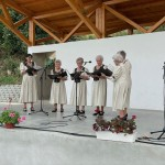 Der Chor des Tscholnoker Rentnerklubs (Foto: Péter Kolonics)