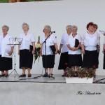 Der Chor des Werischwarer Rentnerklubs (Foto: István Schmidt)