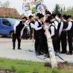 Dr. Péter Szikszay: So einen Maibaum braucht das Hartianer Mädel…
