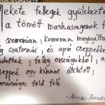 Marossy Benedek írása / Text von Benedek Marossy