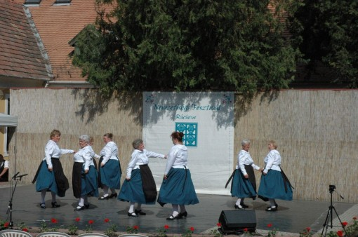 Hexerei Senior Tanzgruppe Sankt Martin (2)
