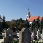 A nagynyárádi temető és a katolikus templom / Der Friedhof und die katholische Kirche in Großnaarad
