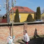 Tojásfát állítottak Szomódon / Ostereierbaum in Sammet