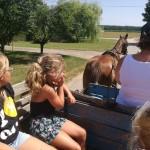 Nationalitätencamp in Großnaarad: Ausflug auf dem Pferdewagen in Litowr