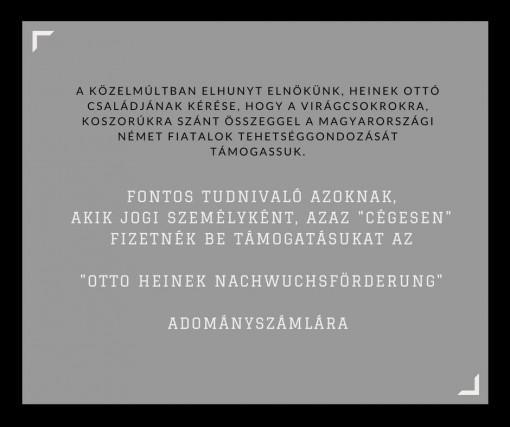Otto_Heinek_ Nachwuchsforderung_tajekoztato