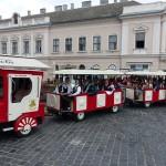 A világtalálkozó résztvevői városnézésen Baján / Die TeilnehmerInnen des Welttreffens haben Baje besichtigt