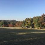 Auf dem Johannisberg
