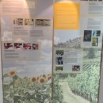 IN ZWEI WELTEN – 25 deutsche Geschichten - Die Ausstellung in Berlin /  A kiállítás Berlinben