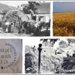 Maria Hinze-Kulcsár: Bauernleben