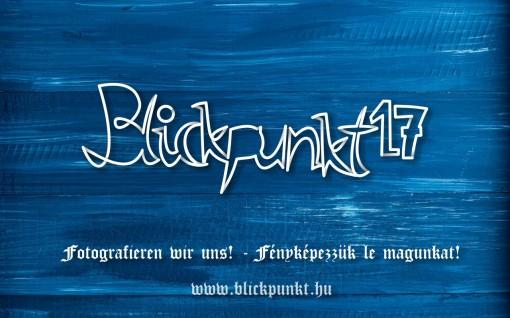 blickpunkt_2017