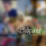 Blickpunkt könyv borítója / Deckblatt des Blickpunkt Buches