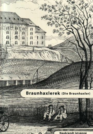 braunhaxler360